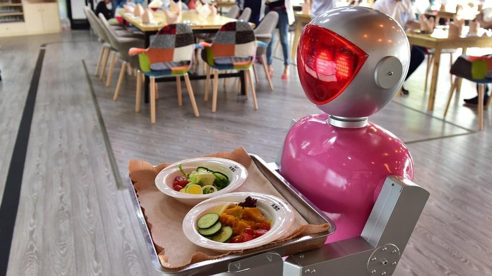 robot waiter, future services at the restaurant, future ordering process